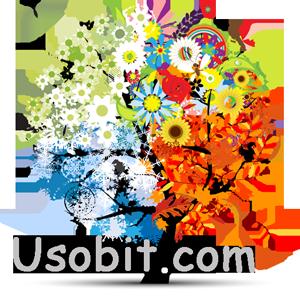 usobit.com