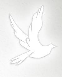Irmi Mace  October 18 1957  August 2 2018 (age 60)