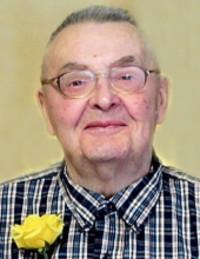 Robert J Stoltenberg  2018