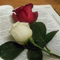 Lila Mae Rose Joyner  February 19 1932  February 15 2019