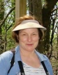 Linda Anne Zimmerman  2019