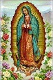 Carol D Sallee Perez  September 23 1937  May 16 2019 (age 81)