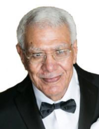 Lotfy Mansour Shehata  2019