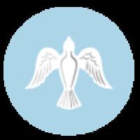 Maeiyumer Nieves  January 16 2020  January 8 2020