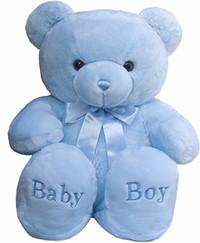 Baby Shaun Anthony Harrison Jr  October 24 2019  February 15 2020