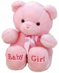 Baby Girl Nova Lashae Vasques  August 29 2019  February 22 2020