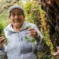 Lucinda Fidelia Romero Romero  August 10 1943  April 26 2020