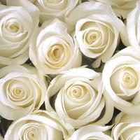 Rosalie Esther Benvenutti  Date of Death: May 28 2020